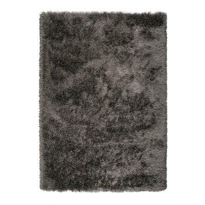Silk Gray Area Rug Rug Size: 67 x 96