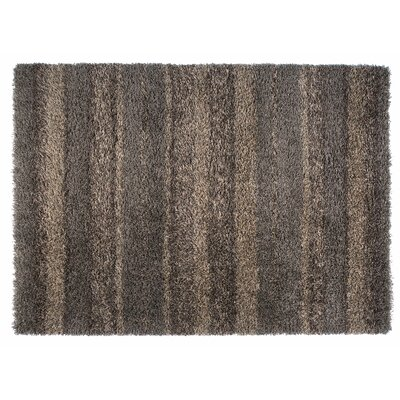 Skyline Brown Area Rug Rug Size: 67 x 96