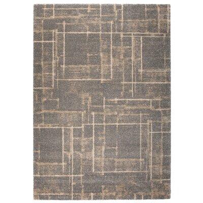 Market Beige/Gray Area Rug Rug Size: 710 x 112