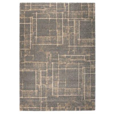 Market Beige/Gray Area Rug Rug Size: 53 x 77