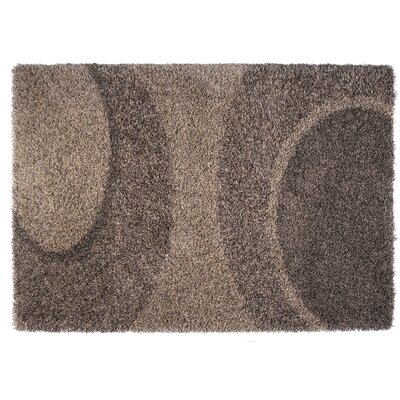 Skyline Beige/Brown Area Rug Rug Size: 53 x 77