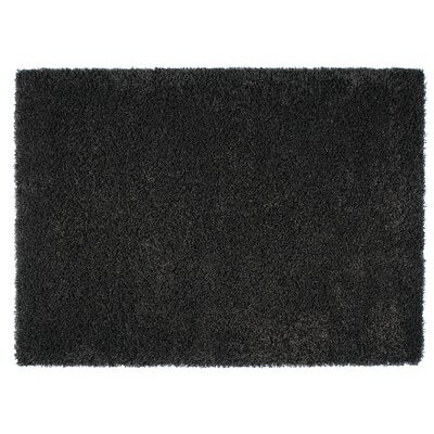 Loft Black Area Rug Rug Size: Rectangle 53 x 77