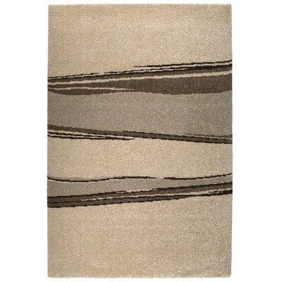 Granite Beige Area Rug Rug Size: 67 x 96