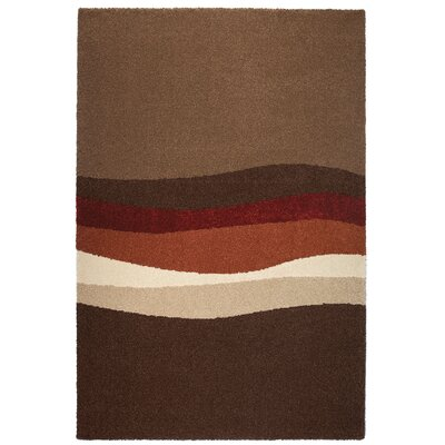Empire Brown Area Rug Rug Size: 53 x 77