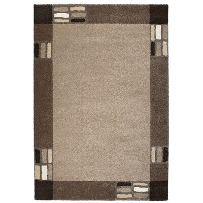 Granite Gray/Brown Area Rug Rug Size: 67 x 96