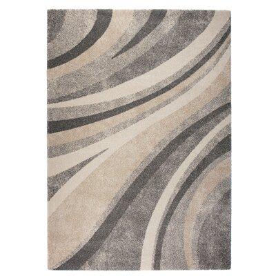 Market Gray/Beige Area Rug Rug Size: 53 x 77