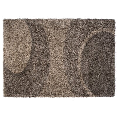 Skyline Beige/Brown Area Rug Rug Size: 67 x 96