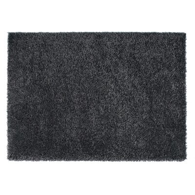 Loft Black Area Rug Rug Size: Rectangle 67 x 96