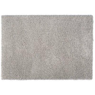 Loft Gray Area Rug Rug Size: Rectangle 53 x 77