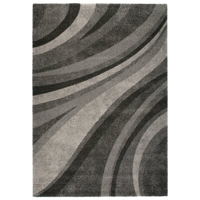 Market Gray Area Rug Rug Size: 53 x 77