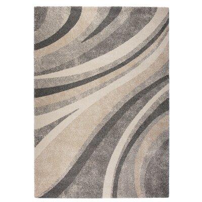 Market Gray/Beige Area Rug Rug Size: 67 x 96