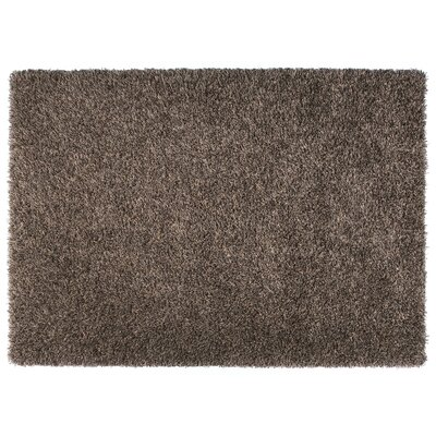 Skyline Brown Area Rug Rug Size: 53 x 77