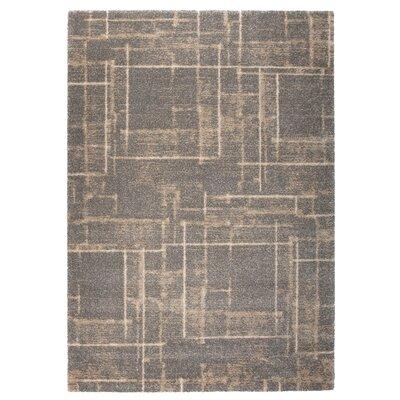 Market Beige/Gray Area Rug Rug Size: 67 x 96