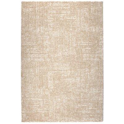 Granite Beige Area Rug Rug Size: 53 x 77