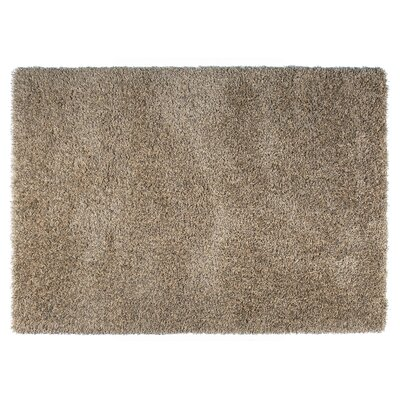 Skyline Brown Area Rug Rug Size: Rectangle 53 x 77