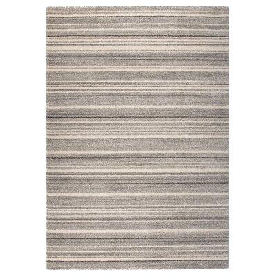 Market Gray/Beige Area Rug Rug Size: 710 x 112
