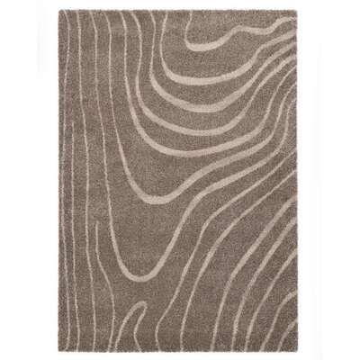 Country Beige/Gray Area Rug Rug Size: 53 x 77
