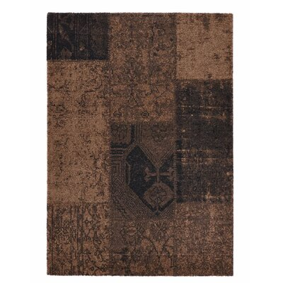 Downtown Brown Area Rug Rug Size: 710 x 112