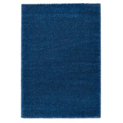 Ocean Blue Area Rug Rug Size: 67 x 96