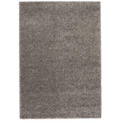 Ocean Gray Area Rug Rug Size: 710 x 112