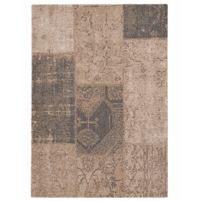 Downtown Beige Area Rug Rug Size: 710 x 112