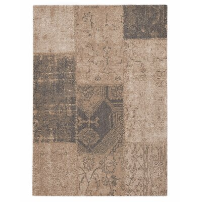 Downtown Beige Area Rug Rug Size: 53 x 77