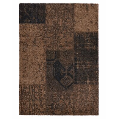 Downtown Brown Area Rug Rug Size: 53 x 77