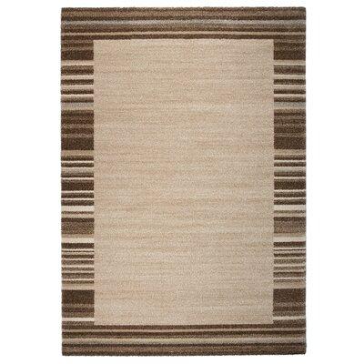 Market Brown/Beige Area Rug Rug Size: 5'3