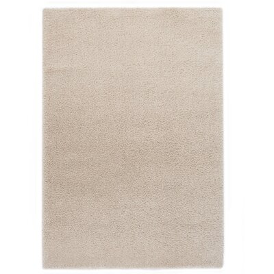 Ocean White Area Rug Rug Size: 67 x 96