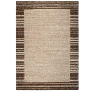 Market Brown/Beige Area Rug Rug Size: 67 x 96