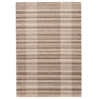 Country Beige Area Rug Rug Size: 5'3
