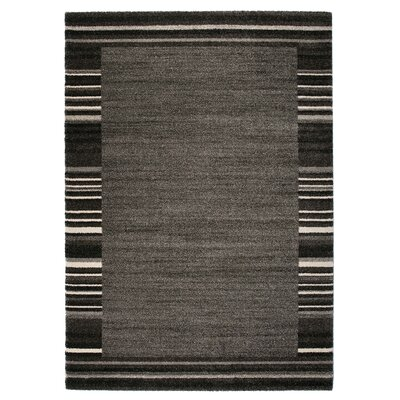 Market Gray/Black Area Rug Rug Size: 67 x 96