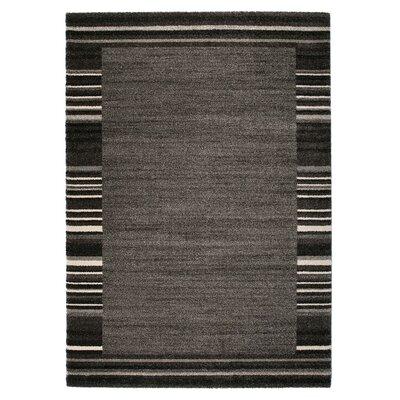 Market Gray/Black Area Rug Rug Size: 5'3