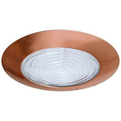 Sloped Fresnel Shower 6 Recessed Trim Trim Finish: Copper/Clear