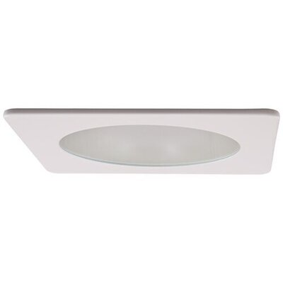 Adjustable Shower Frosted Lens 4 LED Recessed Trim Trim Finish: White