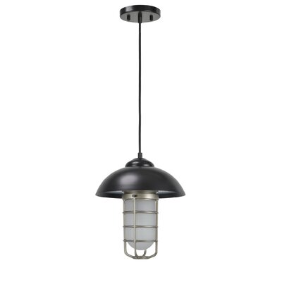 Pinellas Adjustable 1-Light Hanging Mini Pendant