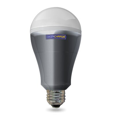 8 Watt E26/Medium (Standard) LED Light Bulb