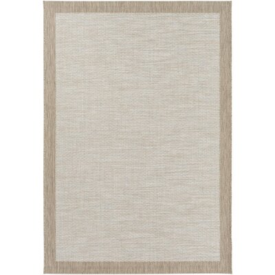 Sky Blue/Neutral Indoor/Outdoor Area Rug Rug Size: Rectangle 311 x 57
