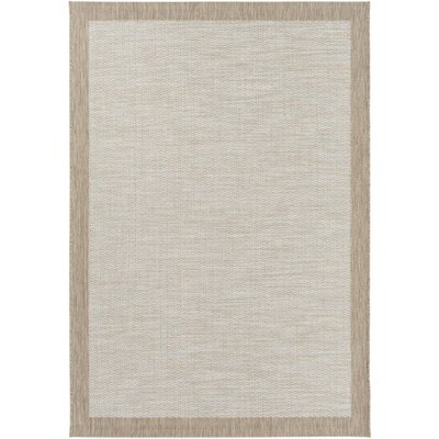Sky Blue/Neutral Indoor/Outdoor Area Rug Rug Size: 311 x 57