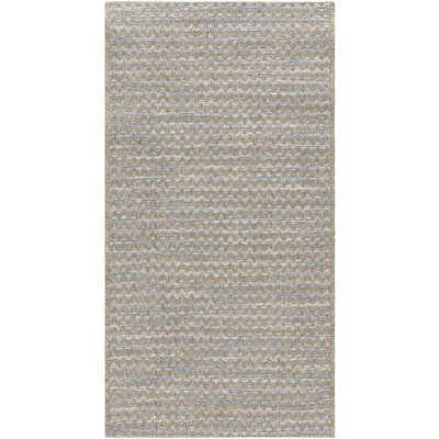 Alexandra Blue Indoor/Outdoor Area Rug Rug Size: 53 x 77