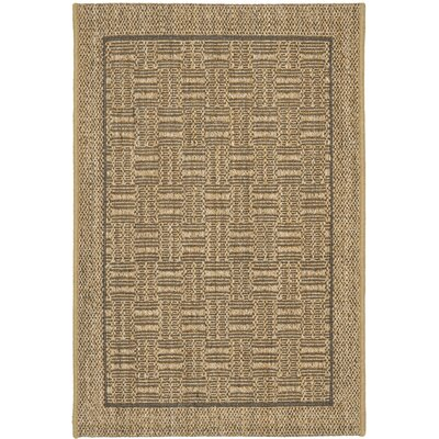 Girard Brown/Tan Area Rug Rug Size: Rectangle 8 x 11