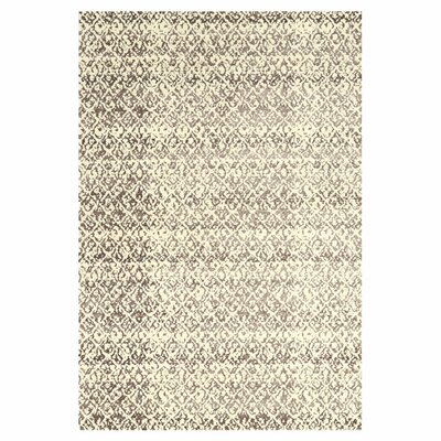 Corrinne Area Rug Rug Size: Rectangle 5 x 8