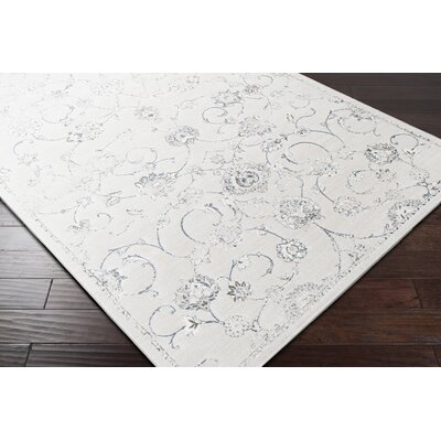 Mishti White/Gray Area Rug Rug Size: Rectangle 2 x 3