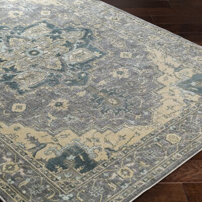 Sommerfield Gray Area Rug Rug Size: 110 x 211