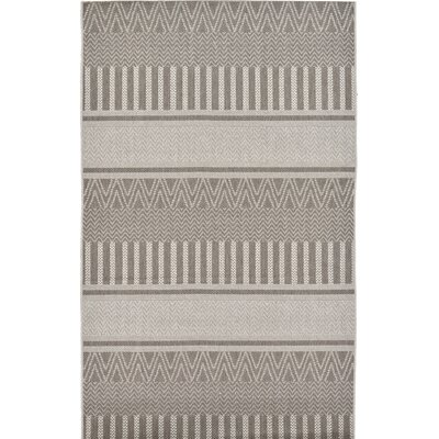Hague Dark Gray Indoor/Outdoor Area Rug Rug Size: 5 x 610