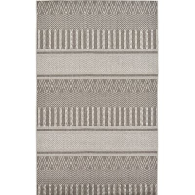 Hague Dark Gray Indoor/Outdoor Area Rug Rug Size: 4 x 610