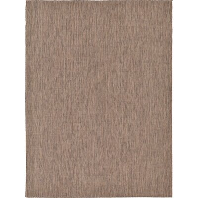 Iberide Brown Indoor/Outdoor Area Rug Rug Size: 9' x 12'
