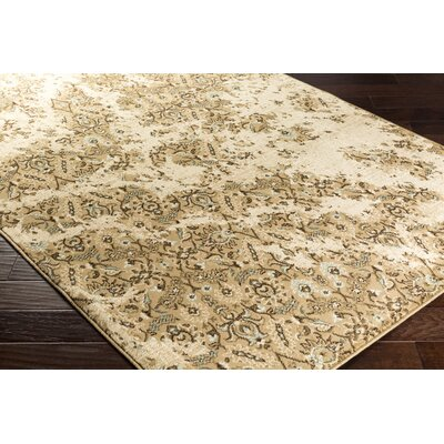 Kulpmont Dark Brown Area Rug Rug size: Rectangle 53 x 76