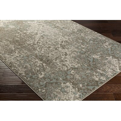 Lansford Grey & Silver Area Rug Rug Size: Rectangle 53 x 76