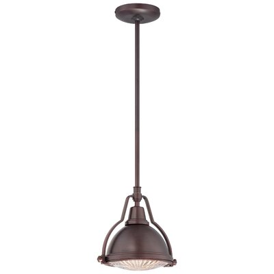 Findlay 1-Light Mini Pendant Finish: Brushed Bronze